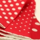 Pochette Costume Soie Rouge 4 en 1 Pois