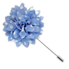 Amaryllis - Bleu Ciel
