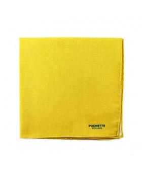 pochette costume jaune