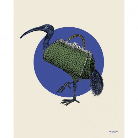 Affiche The Ibisbag - 40x50cm
